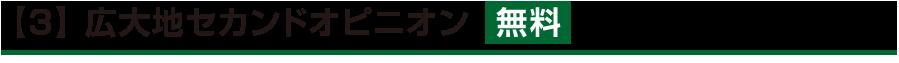 【3】 広大地セカンドオピニオン  無料